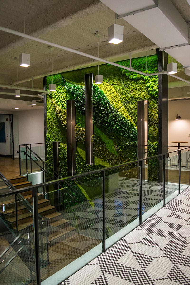 Vertical Garden Preserved Plants For Interior Walls