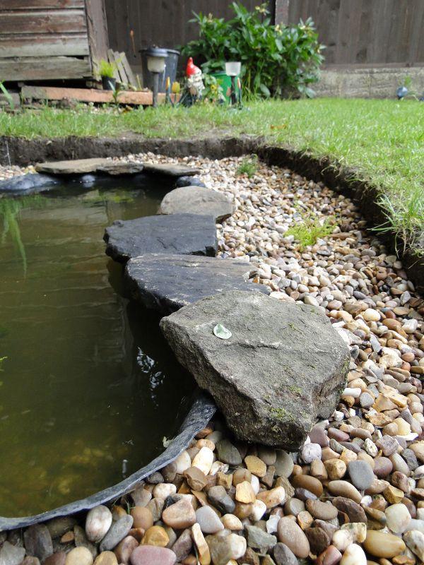 Wildlife Pond Edging Ideas
