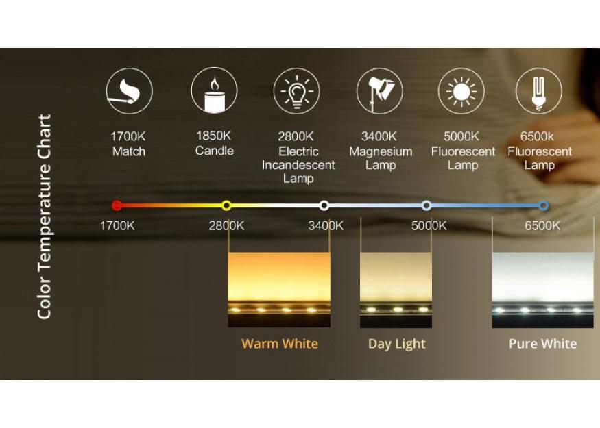 Bluetooth Speaker Lights