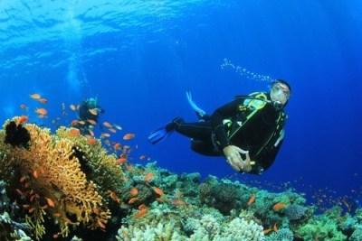 Trip Seminggu ke Gili Trawangan dan Lombok dengan Modal ...