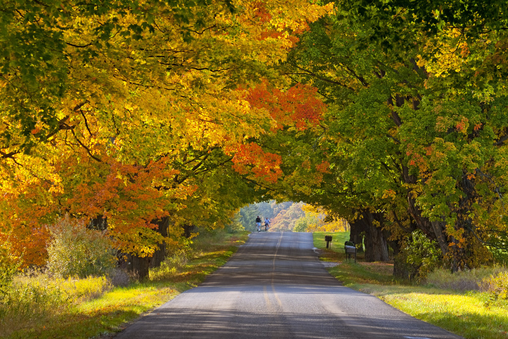 Less Crowded Fall Foliage Destinations You Ve Never Thought Of