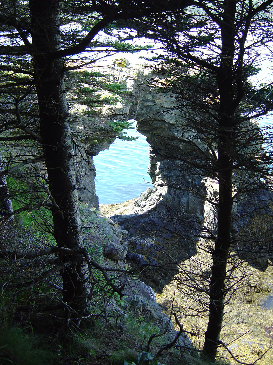 Mananook Grand Manan New Brunswick Canada Geology