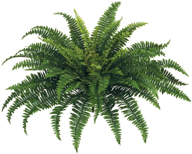 Artificial Plants Home Decor