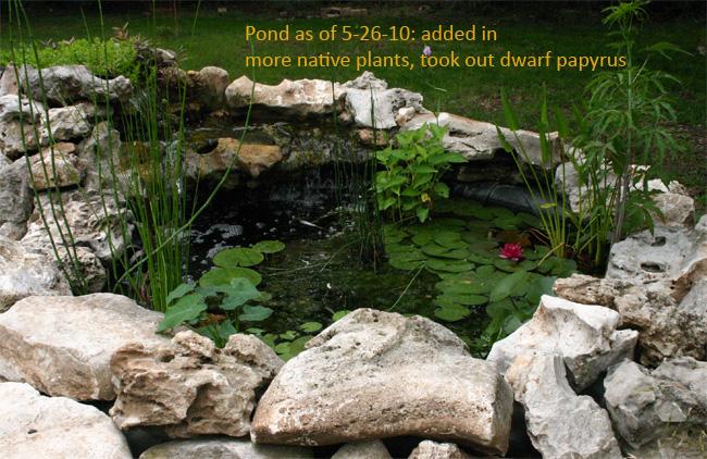 How Make Raised Garden Pond