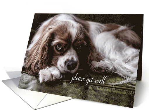 Get Well Card Thank You