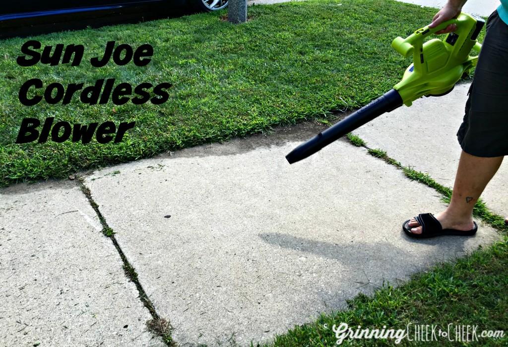 Best Cordless Leaf Blower Mulcher