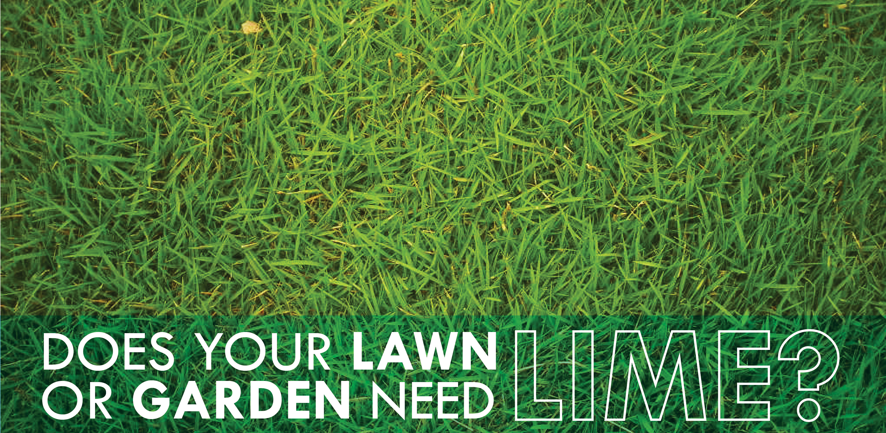 Does What Lawns Lime Do