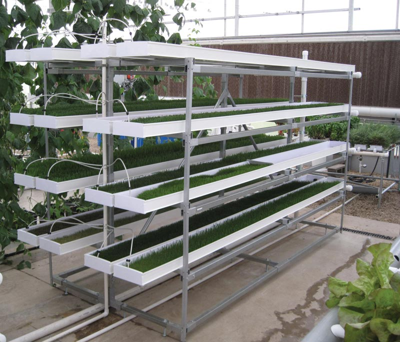 Raised Garden Watering System