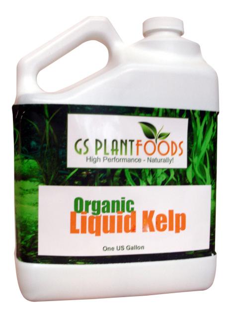 Kelp Fertilizer Concentrate