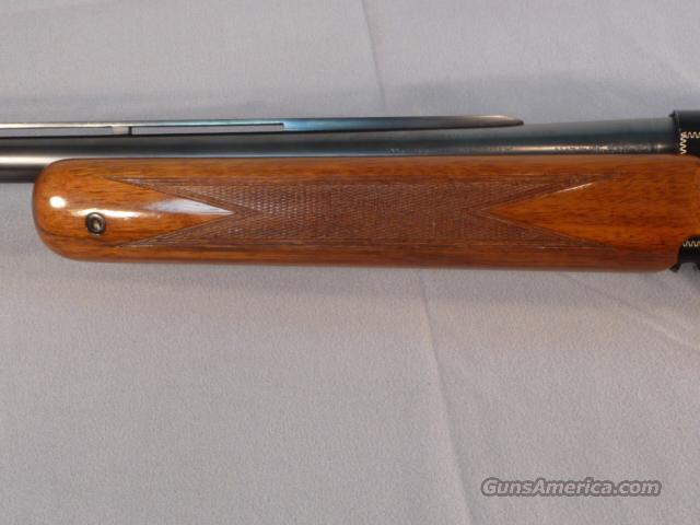 Browning Auto 5 Magnum Twenty