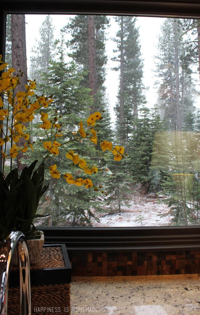 Kitchen Window View at the 2014 HGTV Dream Home