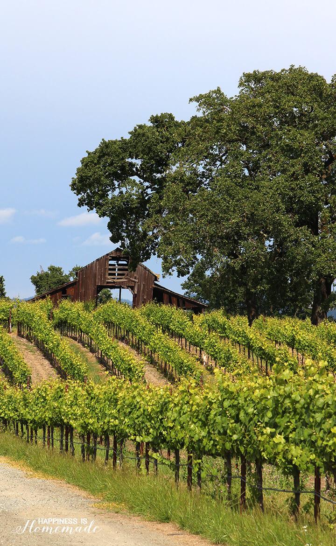 Barn Near the Sonoma-Cutrer Vineyard