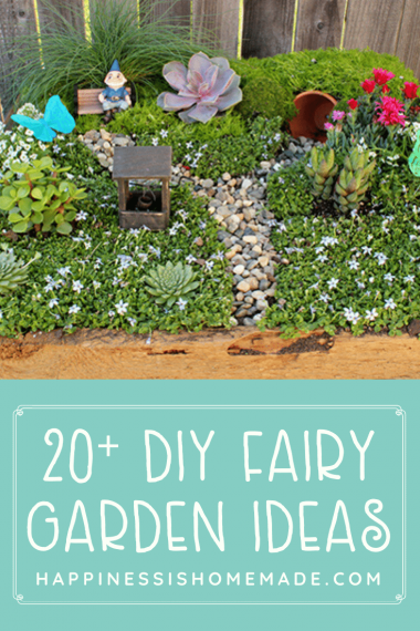 """20+ DIY Fairy Garden Ideas"" graphic and photo of fairy garden example"