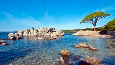Palombaggia Beach Sunny Wallpapers | HD Wallpapers | ID #17831