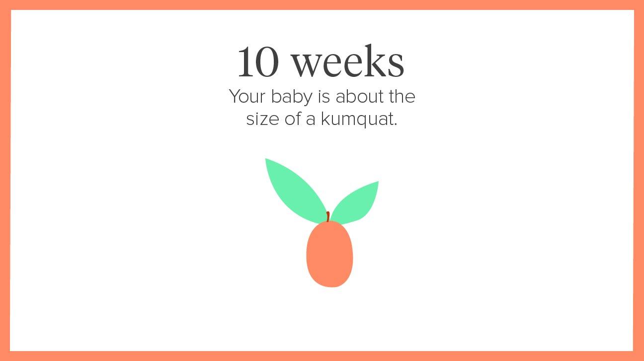 1 Fetus Month Ultrasound