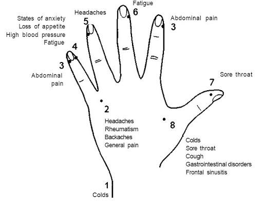 migraine pressure points diagram
