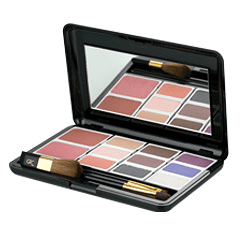 Sunrider® - Kandesn® Advisor Color Compact Case Set 2 Warm Tones