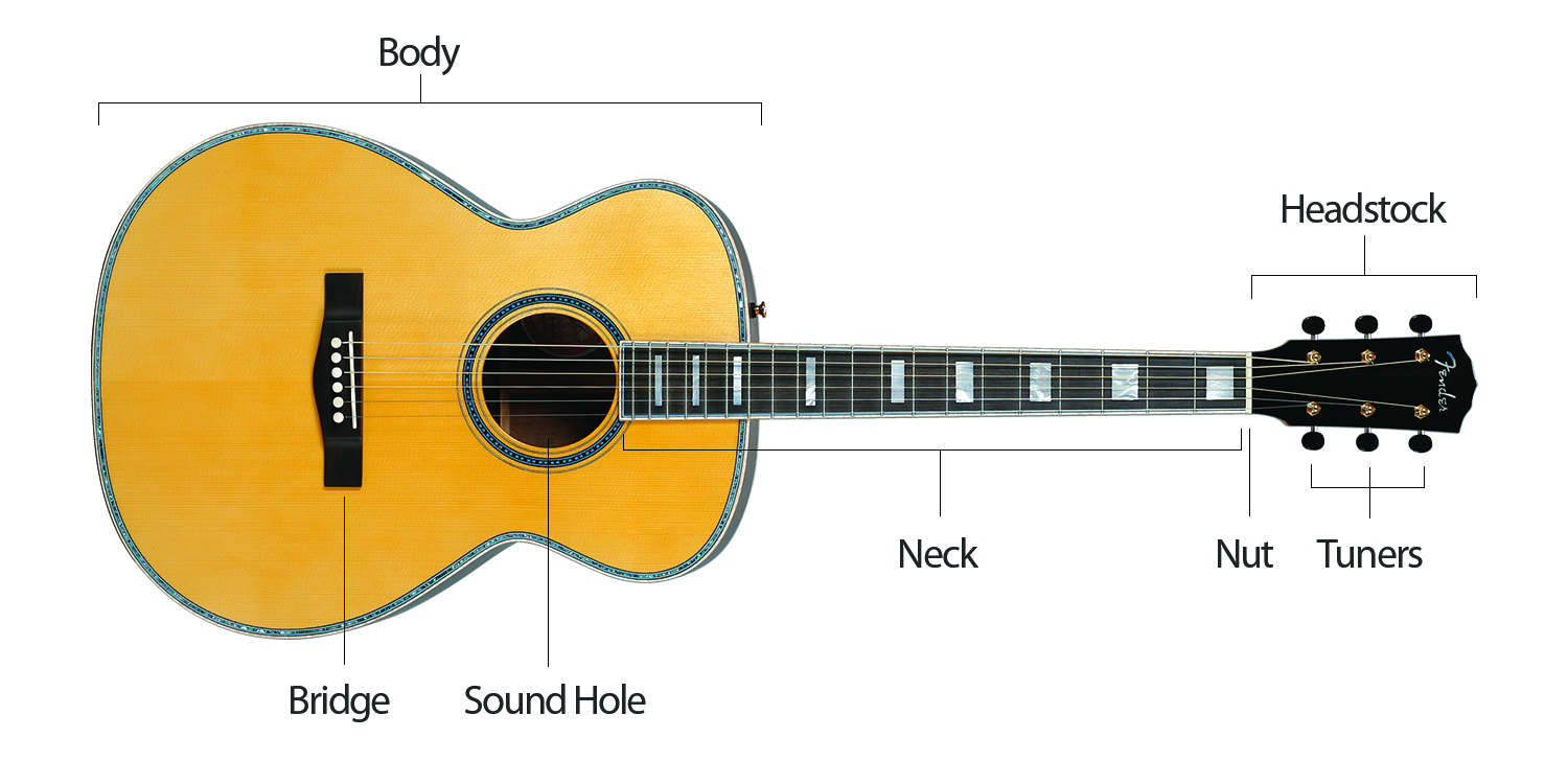Electric Guitar Parts Diagram Of The