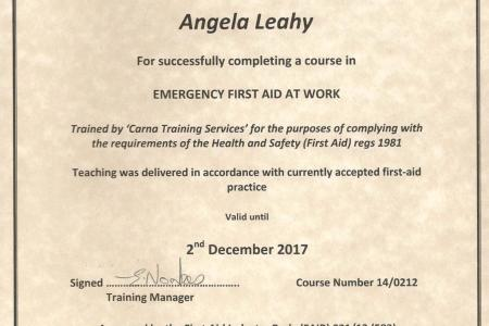 first aid certificate uk download free all templates collection and template designs download for free for commercial or non commercial projects