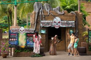 Lost World Haunted Chambers