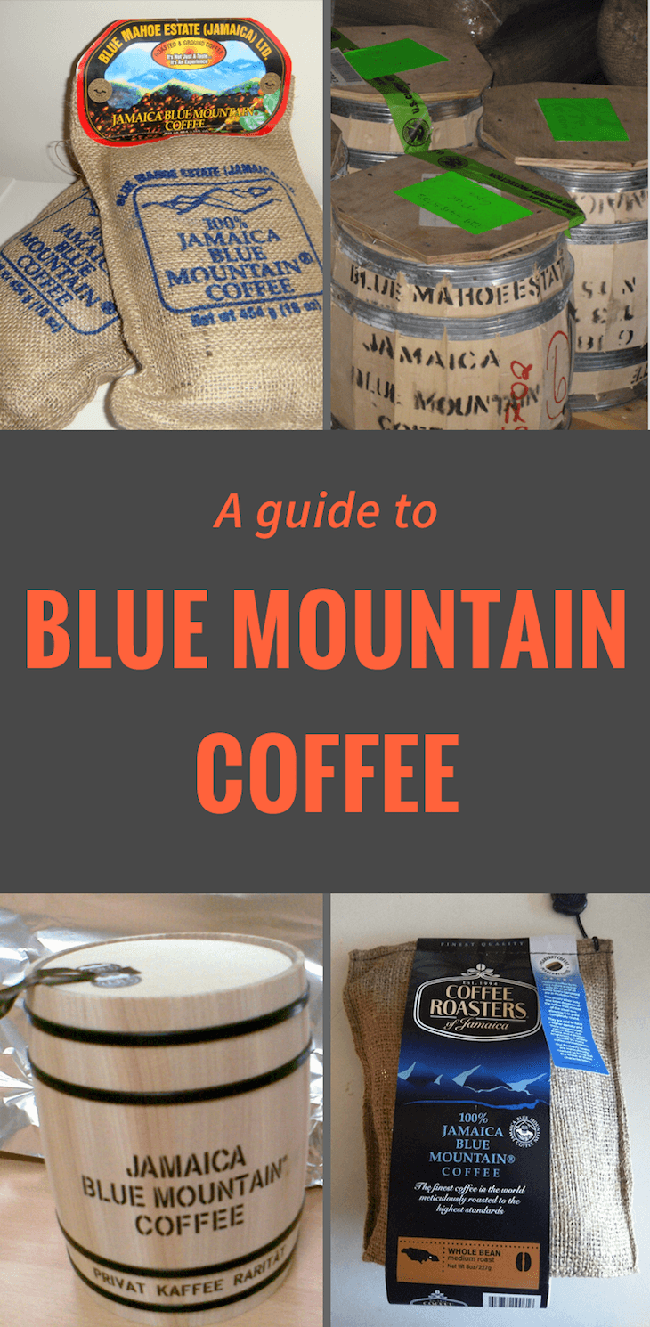 Coffee Mountain Jamaican Plant Blue