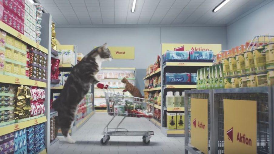 Online Grocery Shop Discount