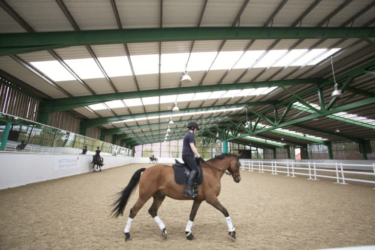 Turn Your Passion For Horses Into A Career Horse And Rider