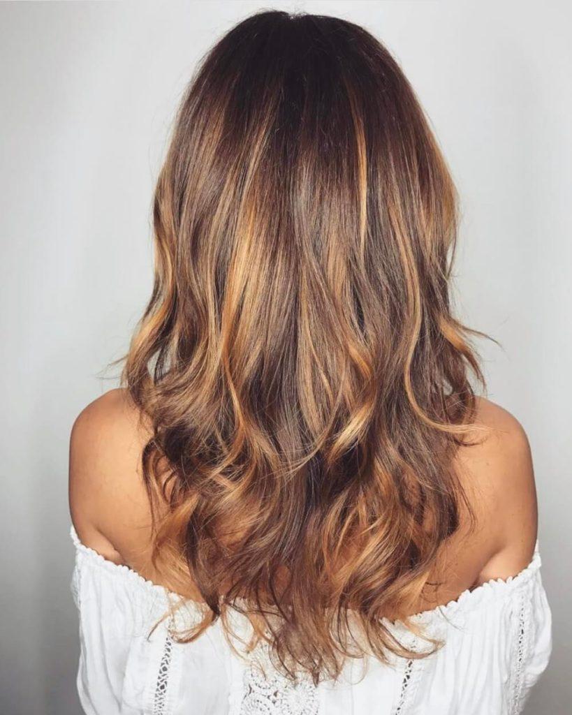 Brown Hair Light Brown Hair