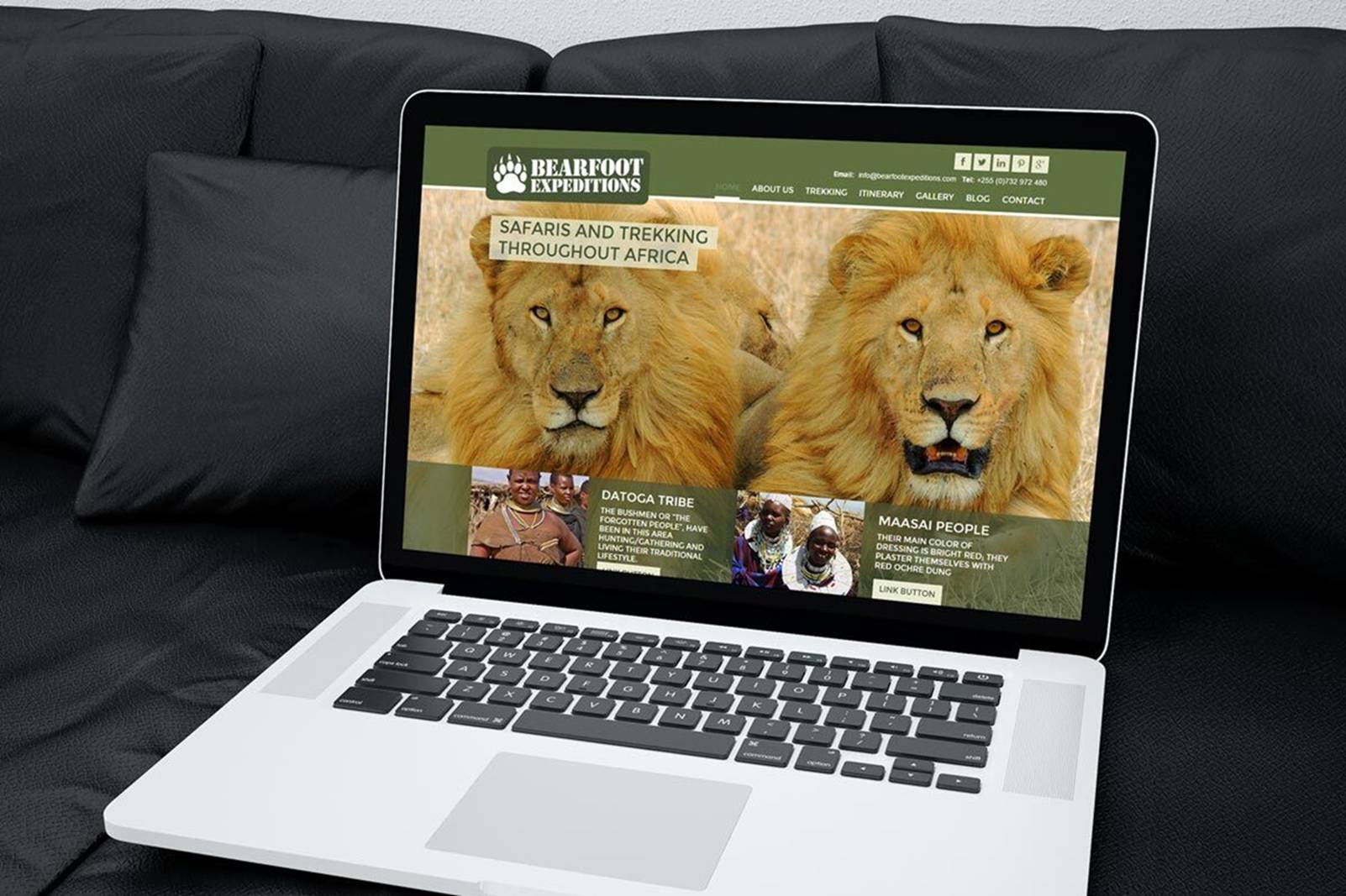 lap top on black sofa, large image of lions