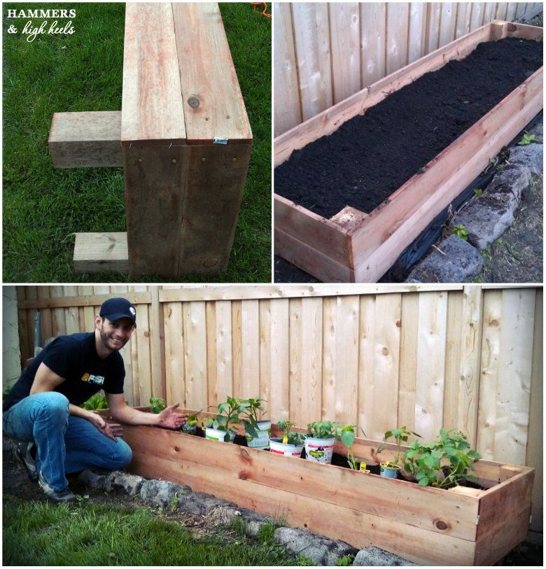 How Build Raised Vegetable Garden Box