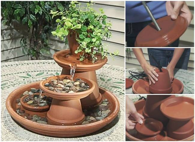 Kitchen Garden Plants Pots