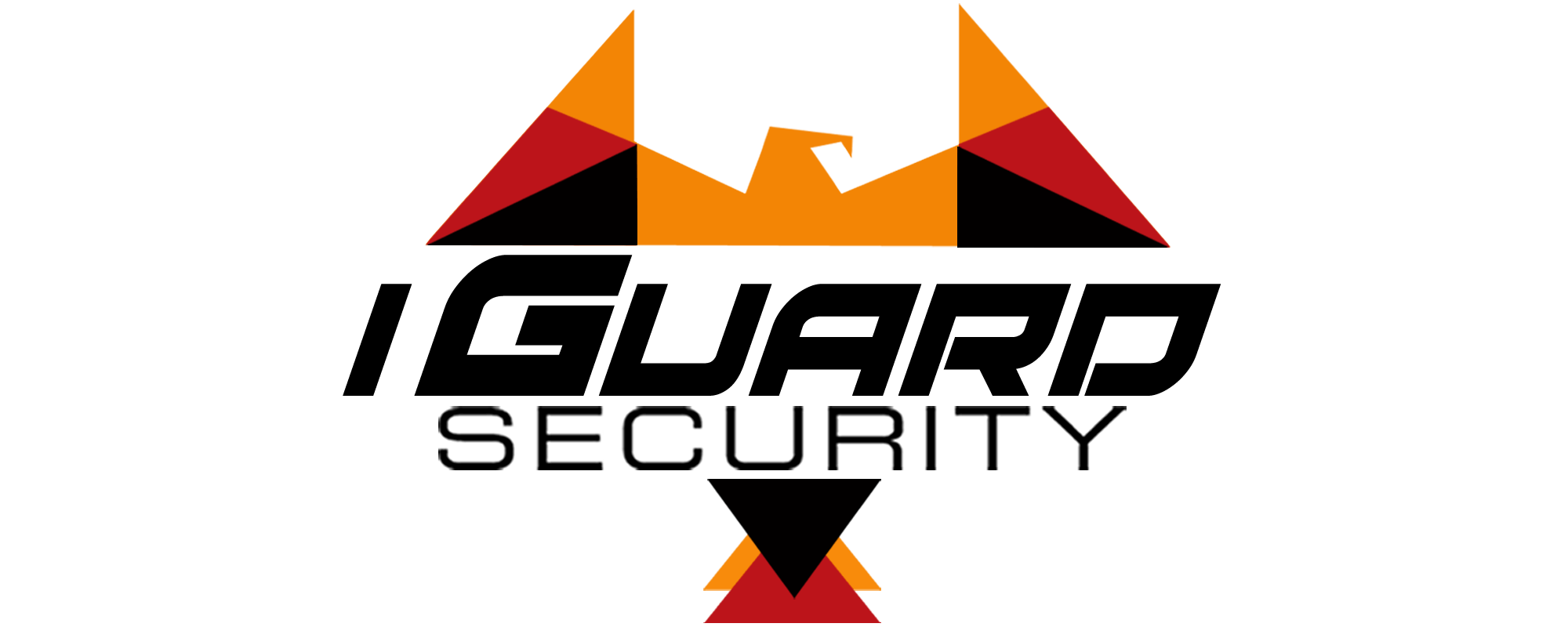 Armed Security Guard Cost