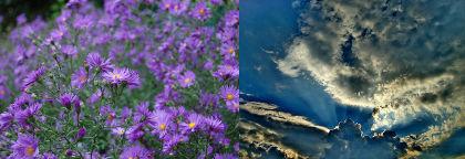 Et eksempel på at kombinere to billeder i en