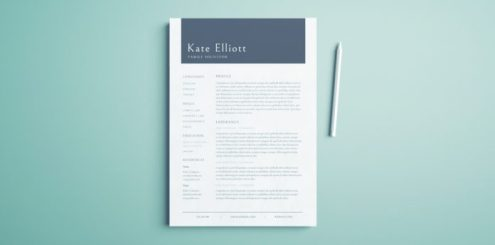 Professional Resume Template   Free InDesign Templates Free Professional Resume Template   Free InDesign Template   Professional  Layout