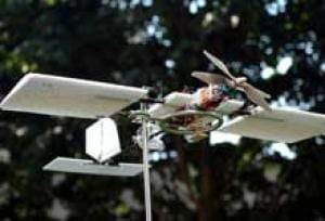 Birds' Perceptual and Maneuvering Abilities Inspire Small Unmanned Aerial Vehicles