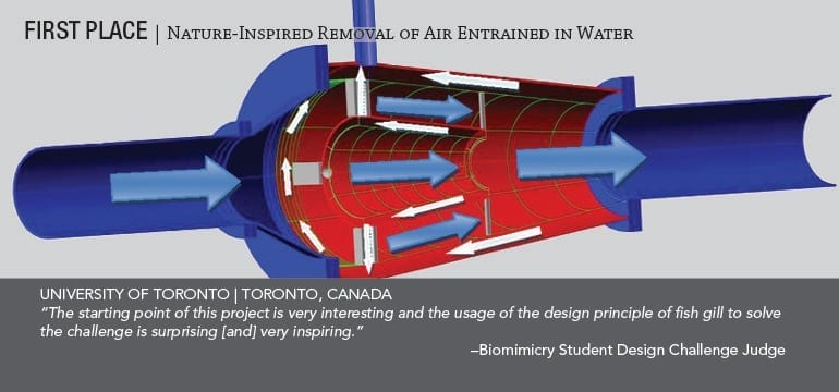 Fish Gill-Inspired Design Wins 1st Prize in Biomimicry Design Competition