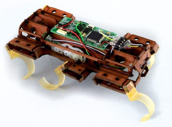 The World's New Second Fastest Robot Is A Tiny Cardboard Cockroach