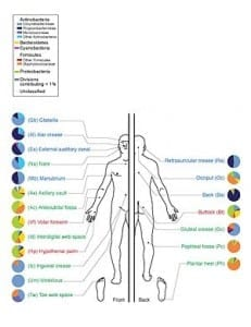 The human microbiome: Me, myself, us