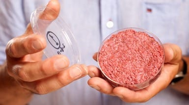 Cultured Beef: Do We Really Need a $380,000 Burger Grown in Petri Dishes?