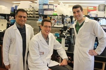 Mac researchers make breakthrough in obesity research