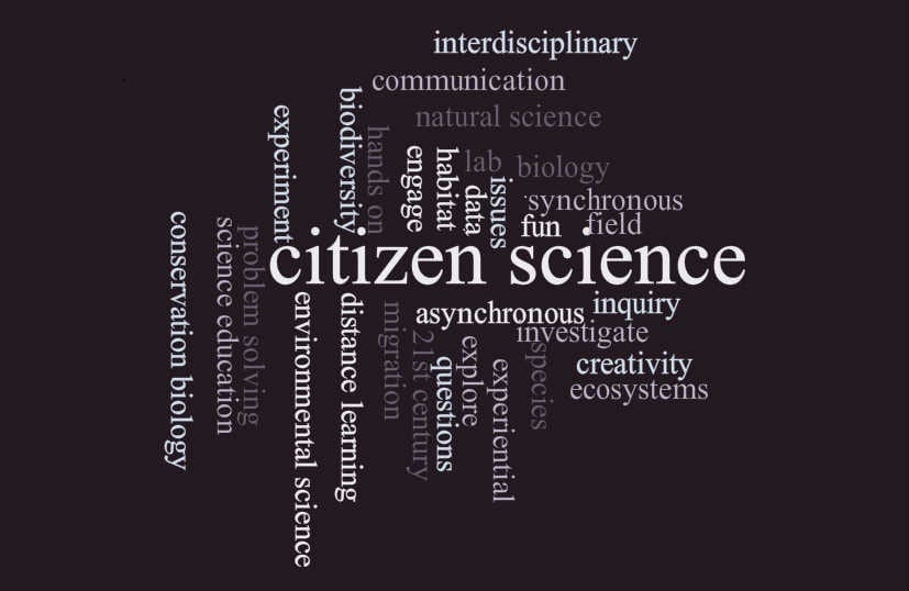 Citizen scientists lead the way in exciting new research