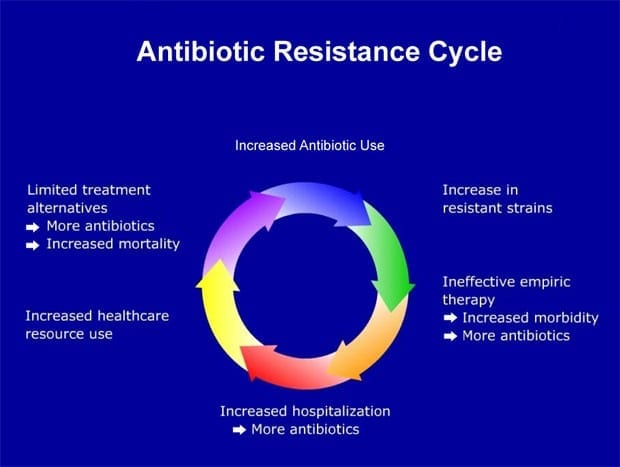 Programming DNA to Reverse Antibiotic Resistance in Bacteria