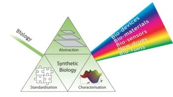 Synthetic biology needs robust safety mechanisms before real world application