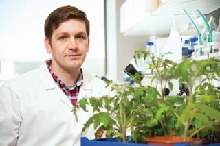Queen's University Belfast Research Could Revolutionise Farming in Developing World
