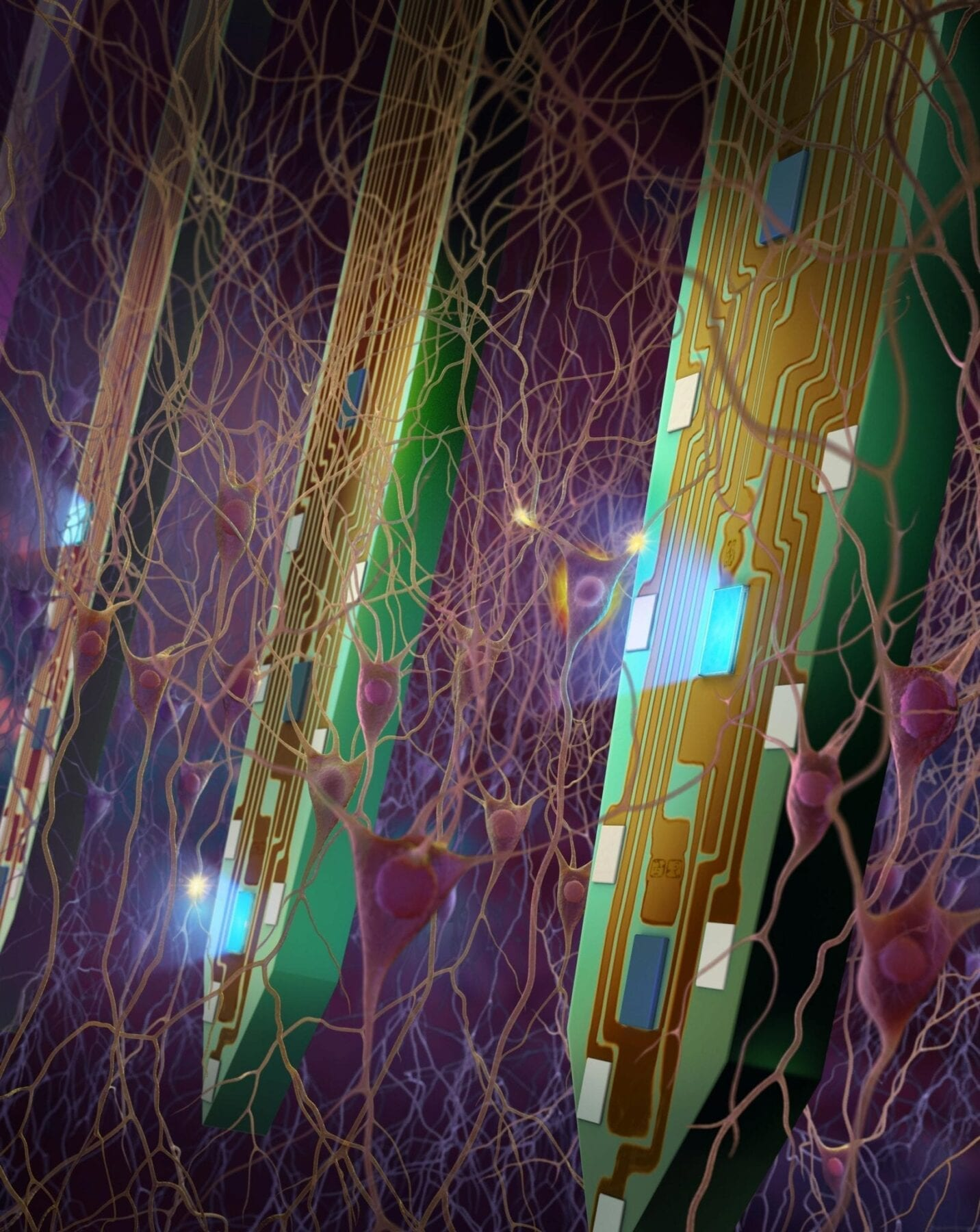 Mapping the brain: Probes with tiny LEDs shed light on neural pathways