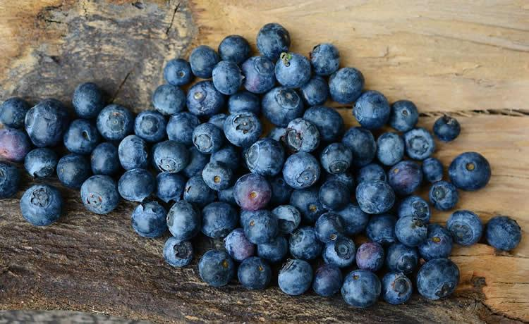 Could blueberry vinegar help to restore cognitive function?