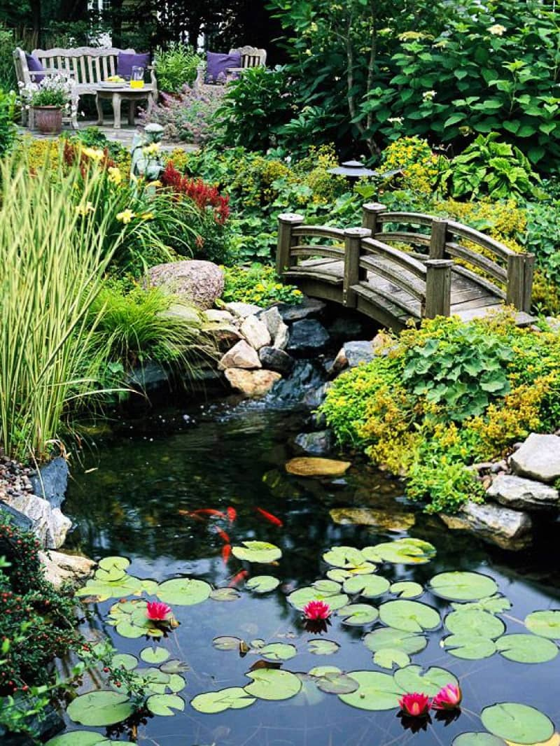 Backyard Pond Landscaping Ideas