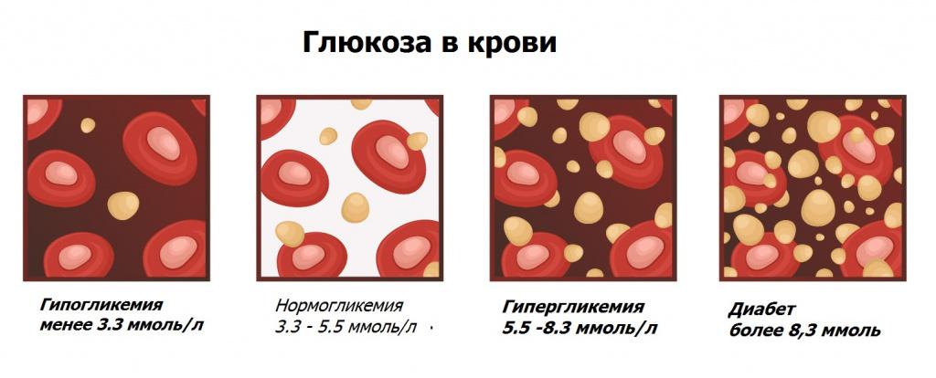 глюкоза в крови.jpg
