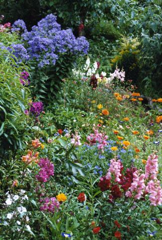 Aultaghreagh Cottage Garden Dunmanway Review Georgina
