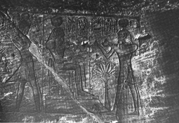 Flowers Names And Egypt Ancient Pictures